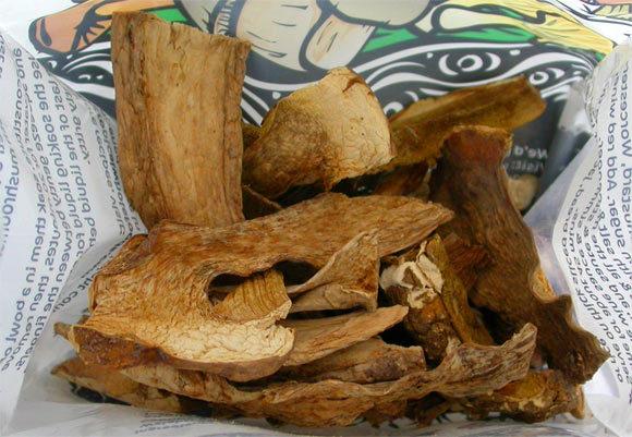 image_2061-Porcini-mushrooms