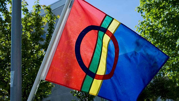 Samernas flagga. Foto: Jonas Ekströmer / TT.